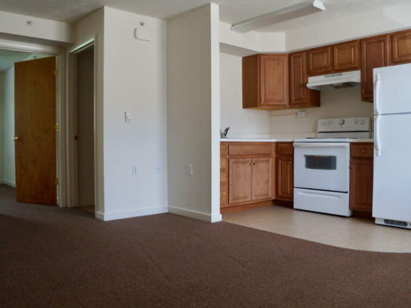 1 Bedroom kitchen Stoney Creek